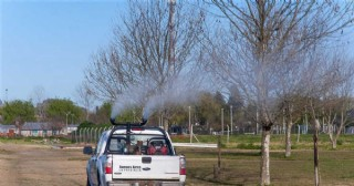 Campaña de fumigación y desratización