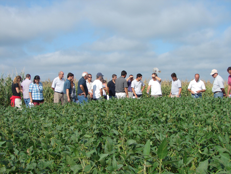 Ante el inminente comienzo de la campaña de soja, la Municipalidad realizó una reunión con los ingenieros agrónomos de Ramallo y la zona. El objetivo de la misma  fue transmitir las modificaciones  en materia legislativa y cuestiones administrativas.