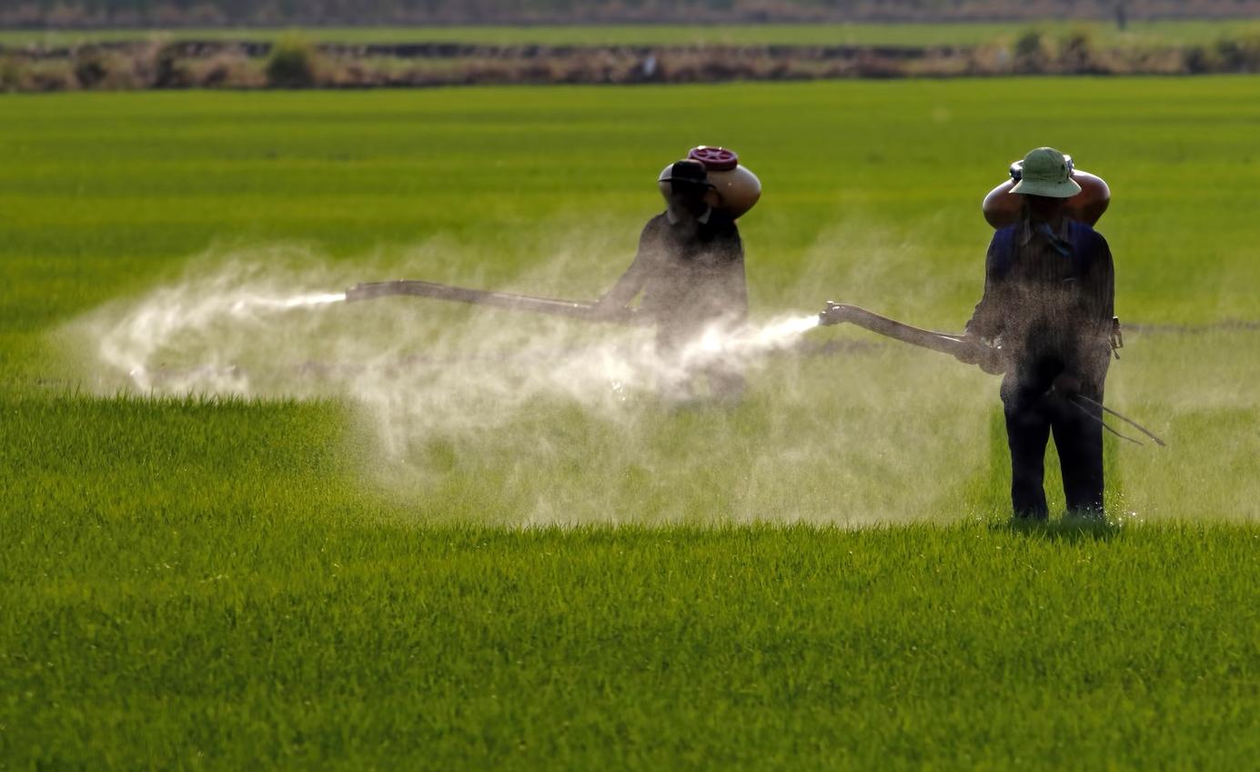 El número de demandas que debe afrontar Bayer por los letales efectos del glifosato asciende a 18.400