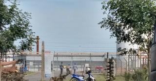 Los despedidos de Bio Ramallo denuncian que la planta volvió a funcionar ilegalmente