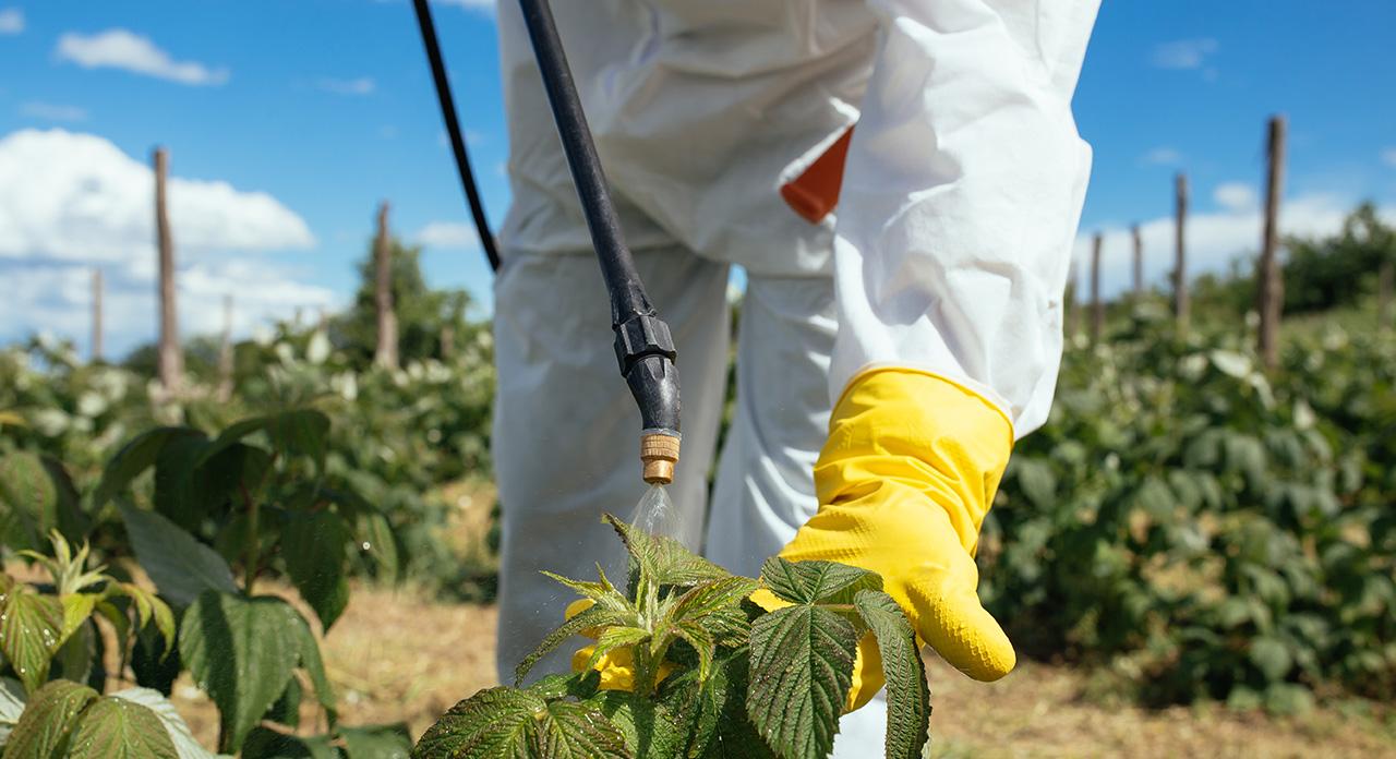 La Municipalidad y el INTA capacitarán sobre el uso responsable de fitosanitarios