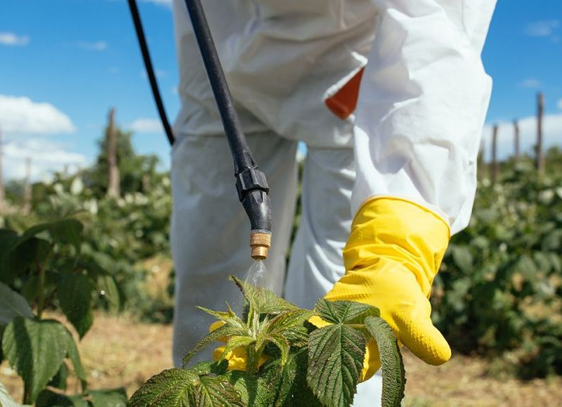 La jornada se realizará este jueves 5 de septiembre en la sede la Federación Agraria.