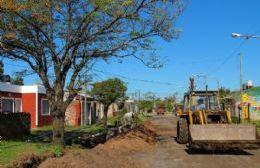 Las cuadrillas de trabajo de la Secretaría de Tierra, Vivienda y Obra Pública Social se encuentran desarrollando tareas en diferentes barrios de la ciudad.