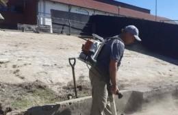 Intensifican tareas para mejorar la zona del Puerto de Ramallo