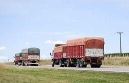 El cereal acopiado sigue en la planta de AFA sin poder llegar al puerto.